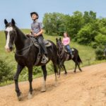 Group horseback riding tours