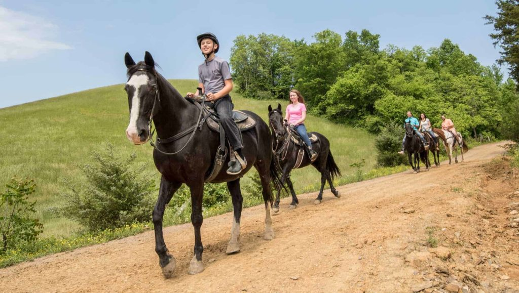 Horseback Riding in Pigeon Forge