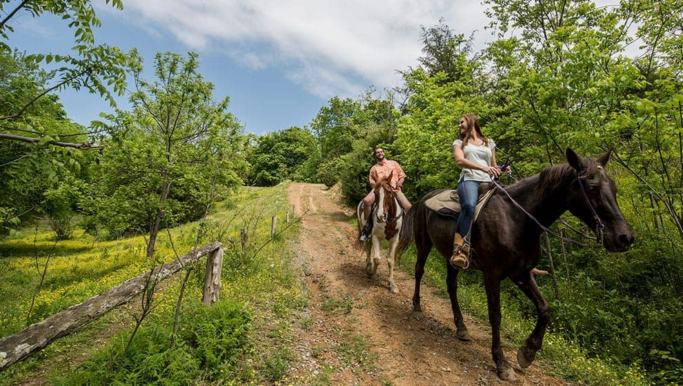 Five Oaks Riding Stable in Pigeon Forge